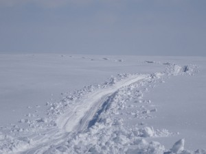 Greenland crossing expedition - breaking trail through powder RS